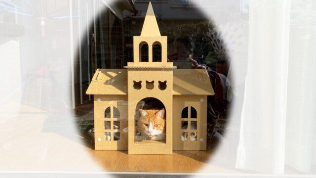 教会風猫ハウスから猫が顔を出している